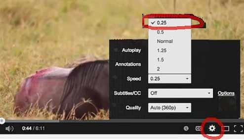 Controlar la velocidad del vídeo en Youtube