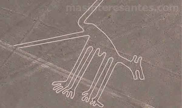 Los geoglifos de las Líneas de Nazca