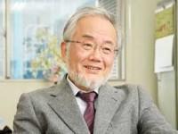 Yoshinori Ohsumi, Premio Nobel de Medicina 2016