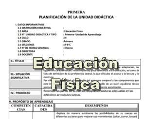 Unidades y sesiones desarrolladas de Educación Física
