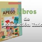 Libros de Educación Inicial