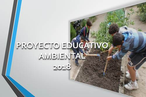 Proyecto Educativo Ambiental 01