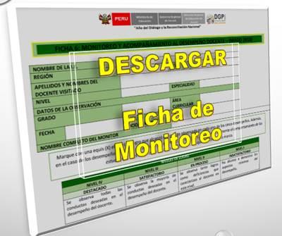 Descargar Ficha de Monitoreo