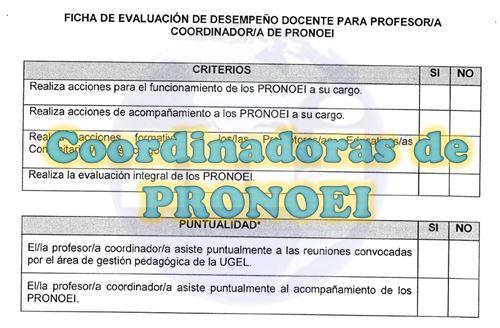 Fichas de evaluacion para Coordinadoras de PRONEI