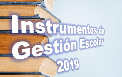 Instrumentos de Gestion de las IIEE 01