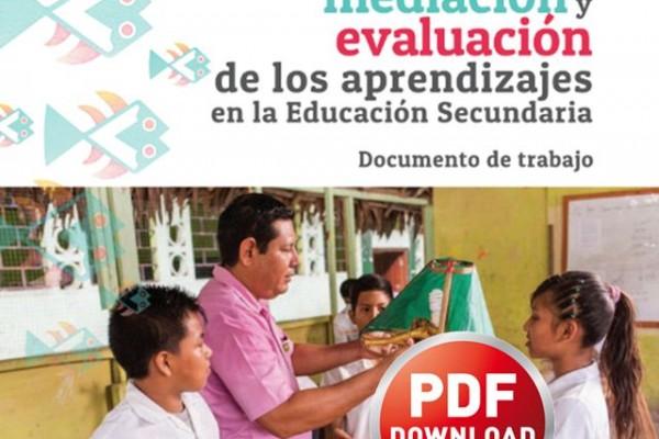 Planificacion mediacion y evaluacion de los aprendizajes en secundaria