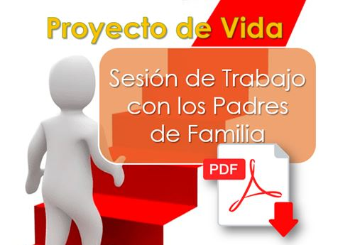 Proyecto de vida Sesion de trabajo con PPFF