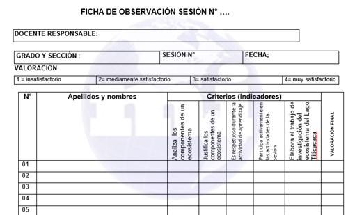 Fichas de evaluacion