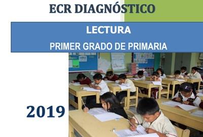 evaluacion censal regional 2019 comunicacion