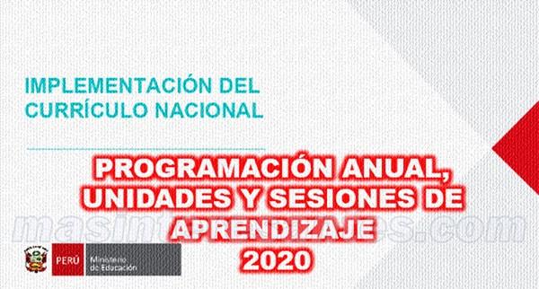 implementacion del curriculo nacional 2020