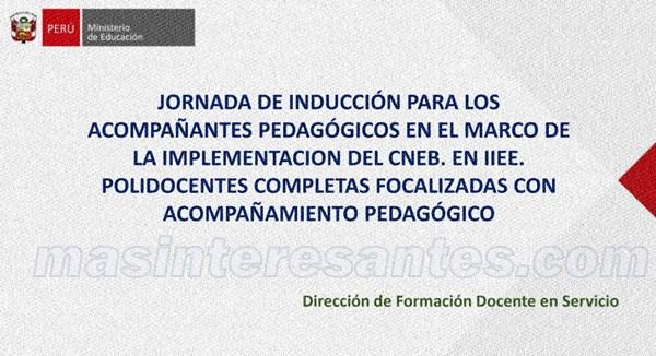 induccion acompañantes pedagogicos 600