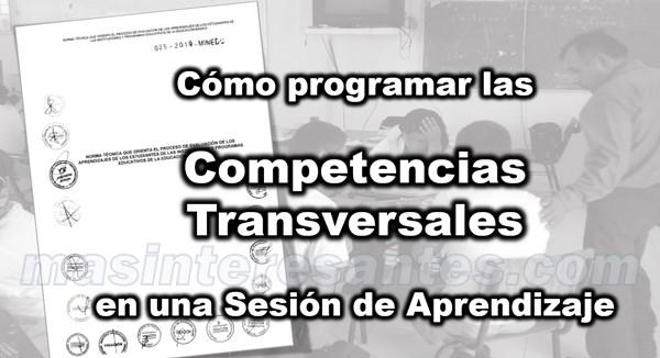 programar competencias transversales