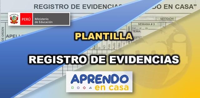 formato registro de evidencias
