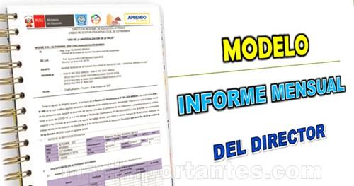 modelo de informe mensual del director