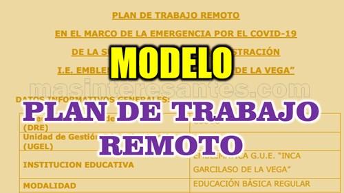 Modelo de Plan de Trabajo remoto