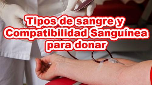 Tipos de sangre para donar y compatibilidad sanguínea