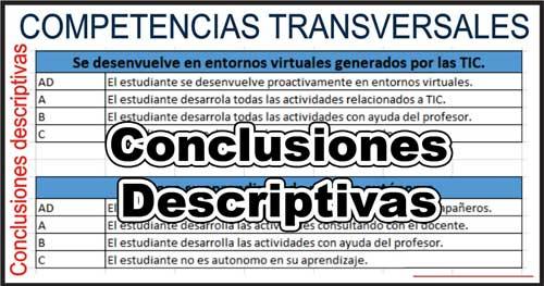 Conclusiones descritivas de Competencias transversales